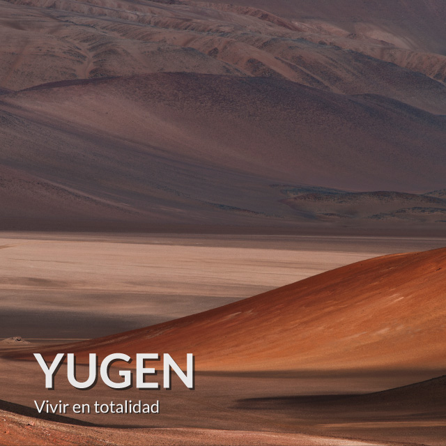 yugen-carta-astral